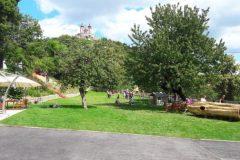 Záhrada v areáli Infocentra