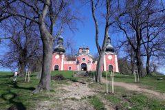 Stromy okolo Dolného kostola