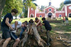 Vyťahovanie starých koreňov